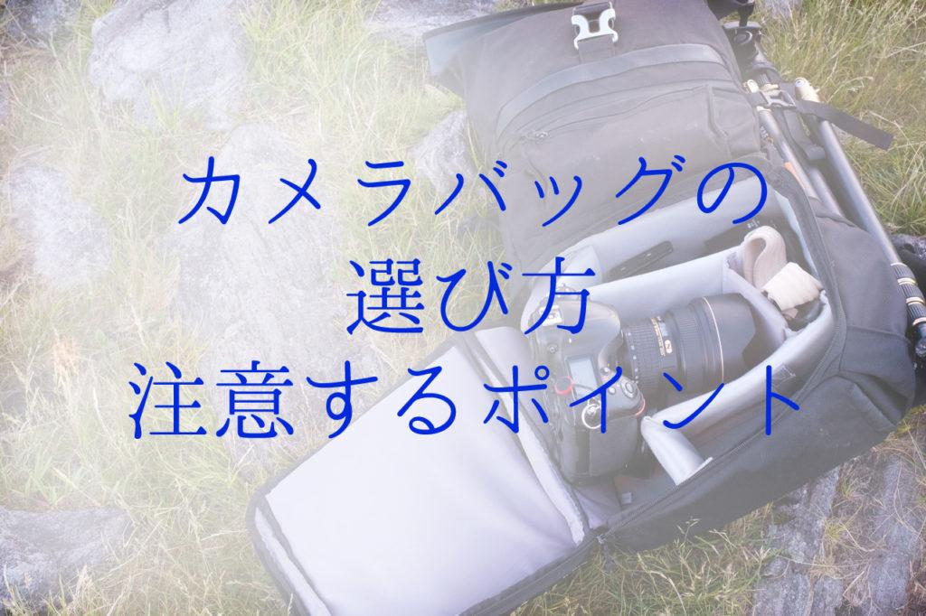 【初心者向け】カメラとレンズのクリーニング【レンズペン】